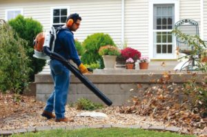 Top 10 Best Leaf Blowers – Reviews And Buyer's Guide