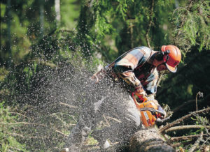 Top 10 Best Chainsaw For The Money – Reviews And Buying Guide