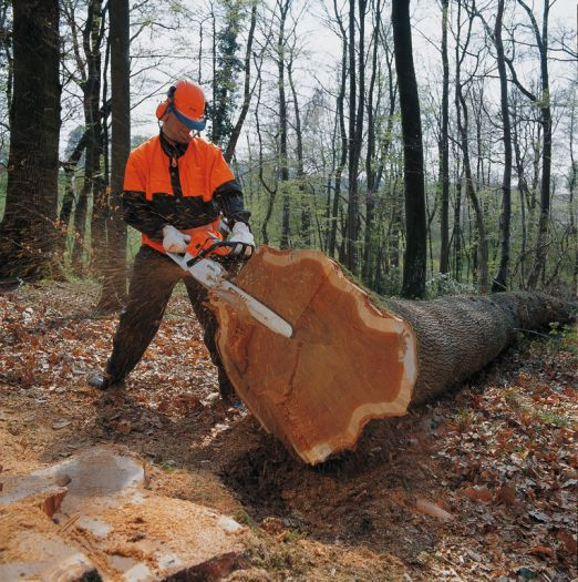 Top 5 Best Commercial Professional ChainSaw – Reviews And Buying Guide