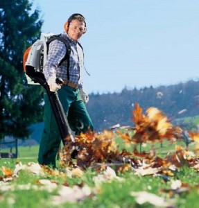Top 5 Best Backpack Leaf Blower – Reviews And Buying Guide